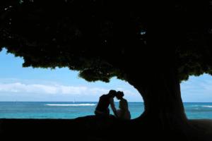 浜辺の木の下でウェディング